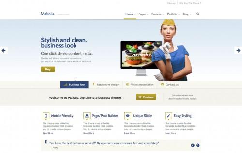 Makalu Business and Portfolio WP Theme