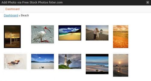 Free Stock Photos Foter