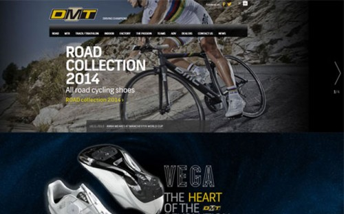 Road Cycling Shoes Producer